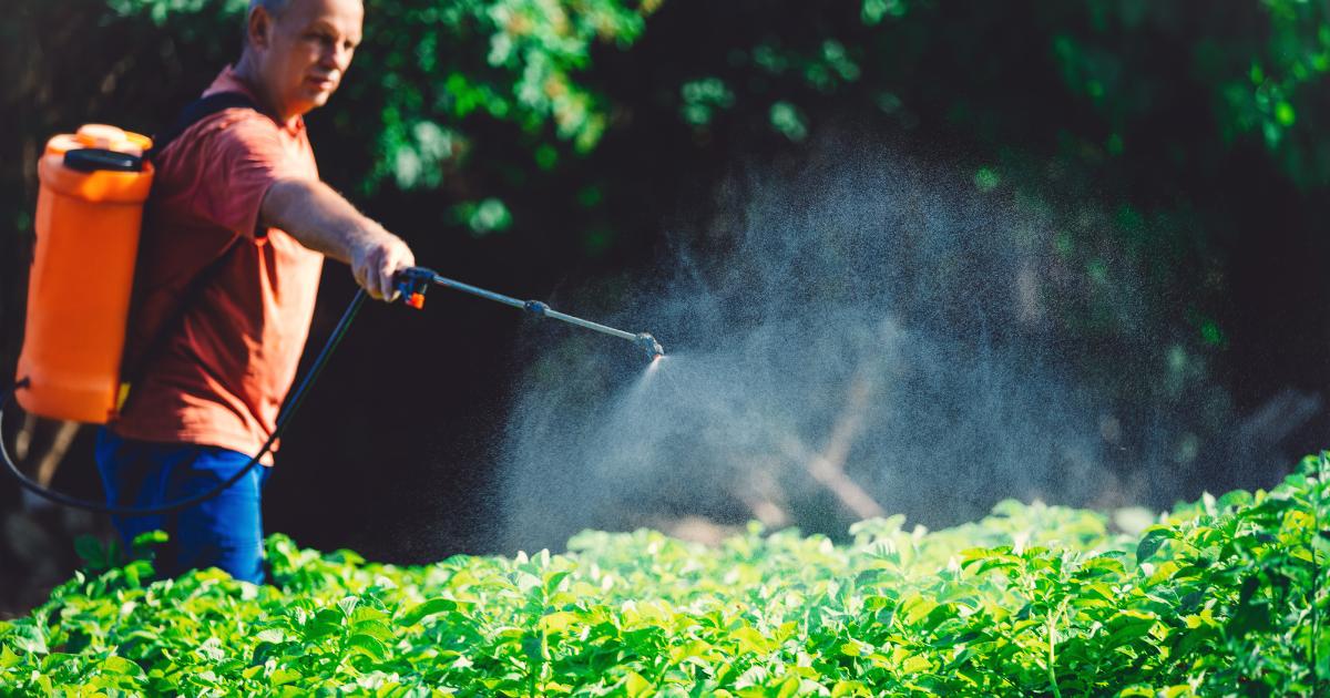 ¿Lesionado por el herbicida tóxico Paraquat?